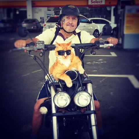Alexandre Goulart e Chiquinho, o gato, posam na motocicleta no Rio (Foto: Arquivo pessoal) g1.globo.com