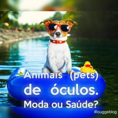 Animais (pets) de óculos. MODA ou SAÚDE?